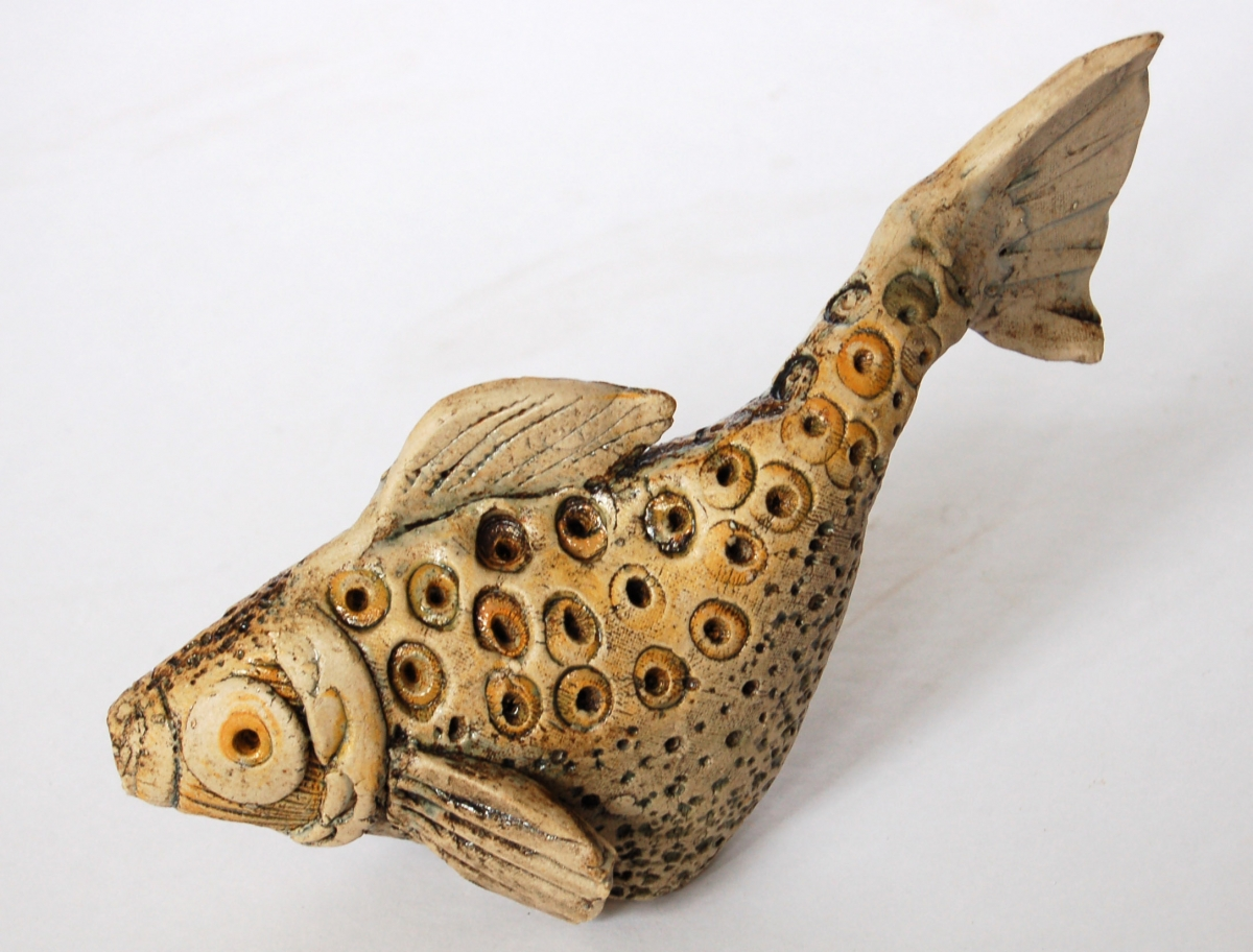 Spotty Fish